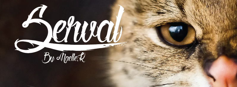 Serval Font preview